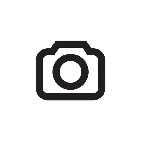 Pocono Modern logo